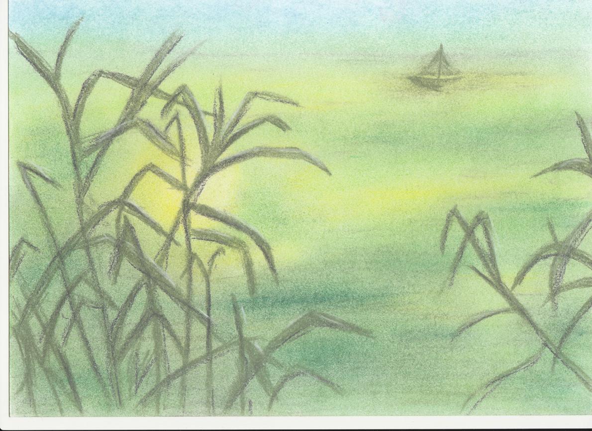 Barevne Kresleni Pastel O Kurzu Kvetuse Hochmalova