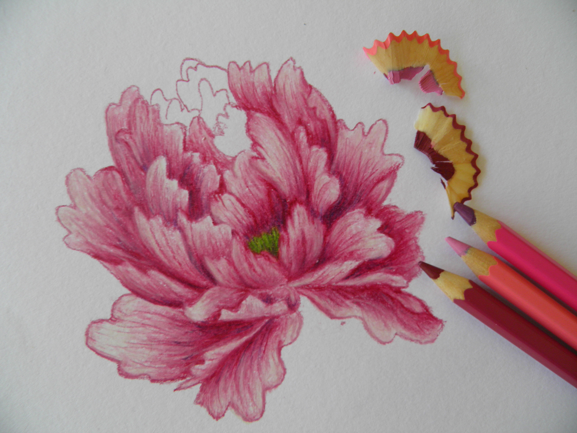 Barevne Kresleni Pastelky Ukazky Praci Vase Domaci Kresby Po